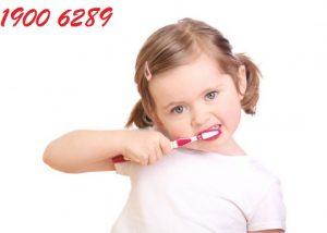 Trước khi ăn và sau khi ăn, đâu mới là thời điểm thích hợp để vệ sinh răng miệng?