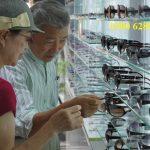 Hồ sơ đề nghị cấp phép hoạt động đối với cửa hàng kính thuốc