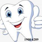 Thủ tục cấp phép hoạt động dịch vụ làm răng giả
