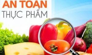 Hồ sơ xin cấp giấy chứng nhận cơ sở đủ điều kiện an toàn thực phẩm quản lý Bộ Y Tế